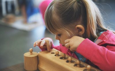 A Brief Introduction and Explanation of The Sensorial Curriculum and its Purpose in the Montessori Classroom